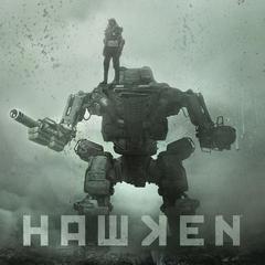Hawken Real-Time Card Game: Sharpshooter VS Bruiser