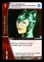 Catwoman, Cat Burglar