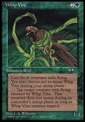 Whip Vine (Bird)