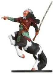 Centaur Hero
