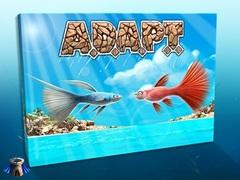 ADAPT Dice Game