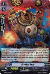 Acrobat Bear - G-RC01/037EN - R