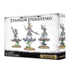 Tzeentch Arcanites Tzaangor Enlightened / Skyfires