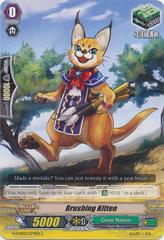 Brushing Kitten  - G-CHB02/074EN - C
