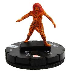 Cheetah  -  004 - Common