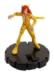 Cheetah (016)
