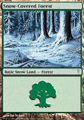 Snow-Covered Forest - Foil on Channel Fireball