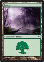 Forest (262) - Foil on Ideal808