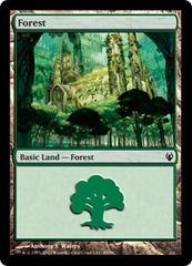 Forest (89)
