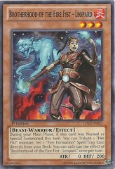 Brotherhood of the Fire Fist - Leopard - LTGY-EN027 - Common - 1st