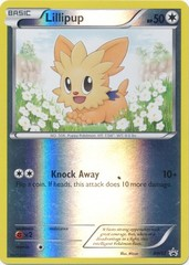 Lillipup - BW52 - Promotional