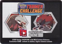 Black & White Night Hunter Trainer Kit Code Card