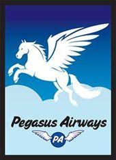 Pegasus Air Card Sleeves