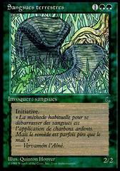 Land Leeches (Sangsues terrestres)
