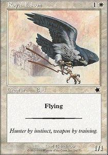 Royal Falcon