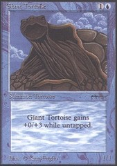 Giant Tortoise (Dark)