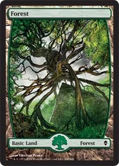 Basic Forest (249) - Full Art