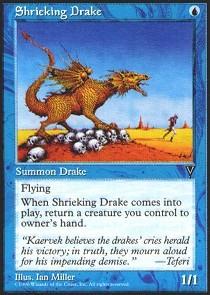 Shrieking Drake