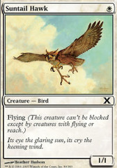 Suntail Hawk on Channel Fireball