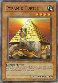 Pyramid Turtle - SDZW-EN007 - Common - 1st Edition