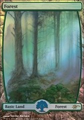 Forest - Full Art - Foil DCI Judge Promo on Channel Fireball