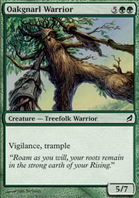 Oakgnarl Warrior