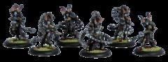 Satyxis Raiders Unit