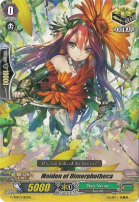 Maiden of Dimorphotheca - G-TD03/015EN