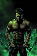 Arrow Season 2.5 # 9