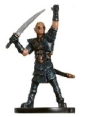 Half-Elf Hexblade