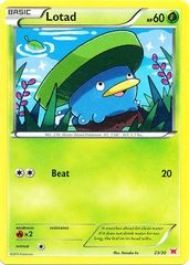 Lotad - 23/30 - XY Trainer Kit (Latias)