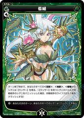 Plant Wear - WX02-040 - R