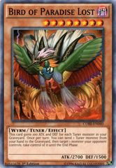 Bird of Paradise Lost - CORE-EN040 - Common - 1st Edition