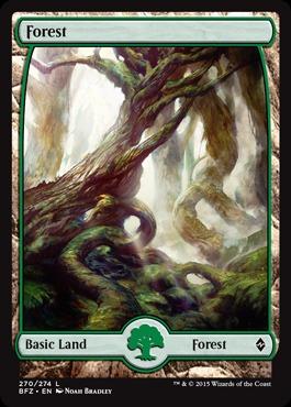 Forest (270) - Foil - Full Art