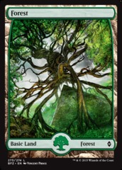 Forest (273) - Foil (Full Art)