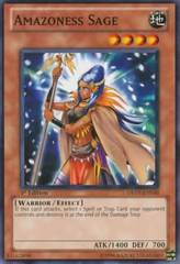 Amazoness Sage - DREV-EN030 - Common - 1st Edition