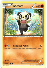 Pancham - 86/162 - Common