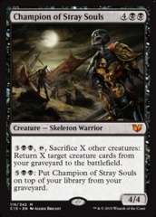 Champion of Stray Souls (C15)