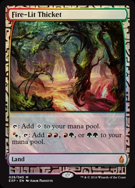 Fire-Lit Thicket - Foil