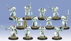 Dawnguard Sentinels  (Plastic)