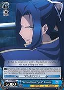Fictional Heroic Spirit Assassin - FS/S36-E089 - C