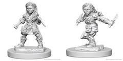 Nolzur's Marvelous Miniatures - Halfling Rogue (Female)