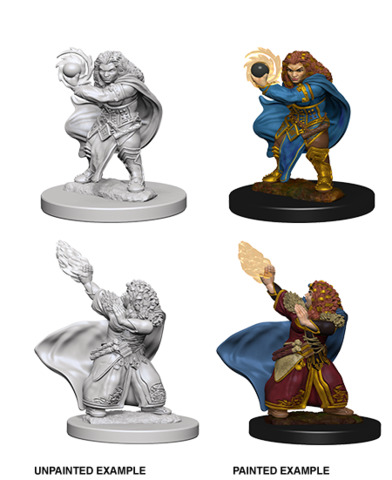 Nolzurs Marvelous Miniatures - Dwarf Wizard (Female)