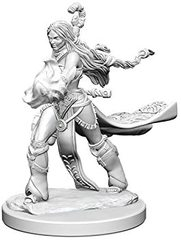 Pathfinder Deep Cuts Unpainted Miniatures: W1 Human Female Sorcerer