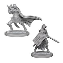 Pathfinder Battles Unpainted Minis - Elf Male Paladin