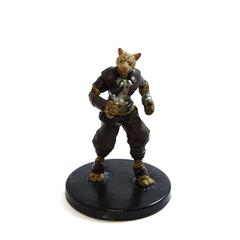 Tabaxi Hunter