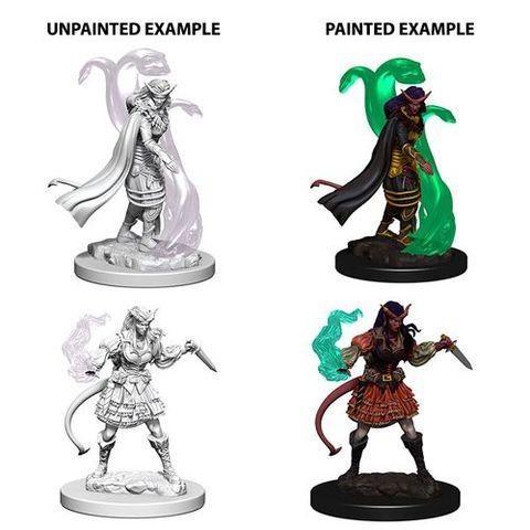 Nolzurs Marvelous Unpainted Miniatures - Tiefling Female Sorcerer