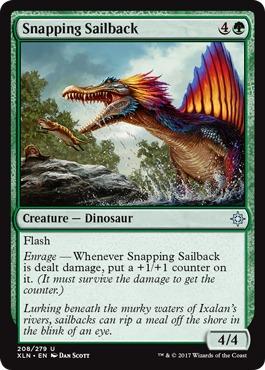 Snapping Sailback - Foil