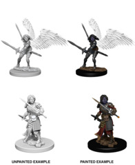 Nolzur's Marvelous Miniatures - Aasimar Female Paladin