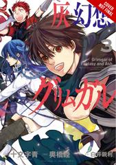 Grimgar Of Fantasy and Ash Graphic Novel Vol 03 - Comic